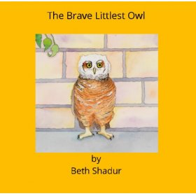 The Brave Littlest Owl by Beth Shadur